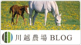 川越農場BLOG