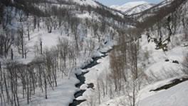 雪解けの清流をはこぶ恵岱別川